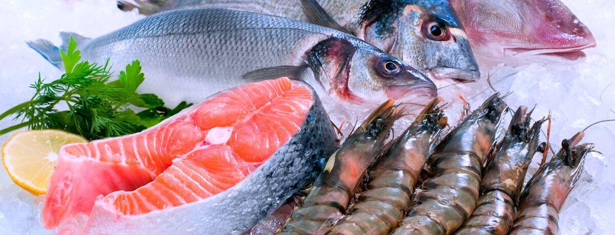 انواع ماهی جنوب؛ خوشمزه و خوش طعم