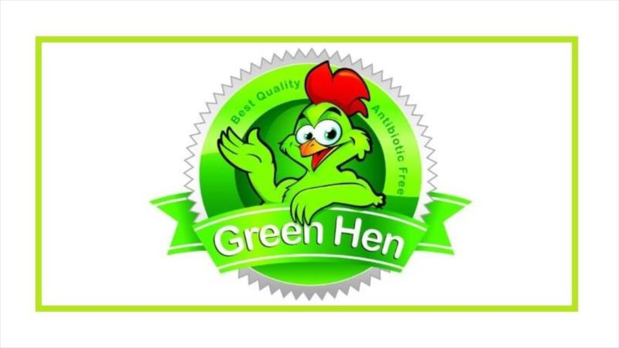 مرغ سبز( بدون آنتی بیوتیک) چیست و تفاوت آن با مرغ معمولی چه می باشد؟