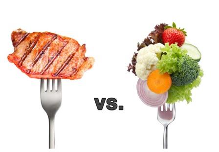 تفاوت پروتئین حیوانی و گیاهی در چیست؟