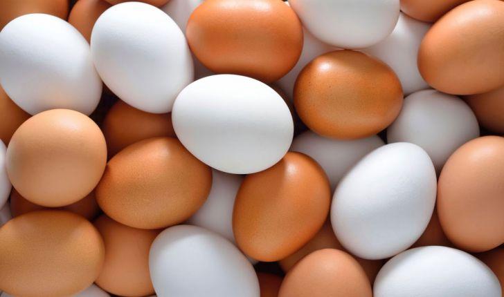 تخم مرغ و 8 نکته مهم درمورد آن که نمیدانید