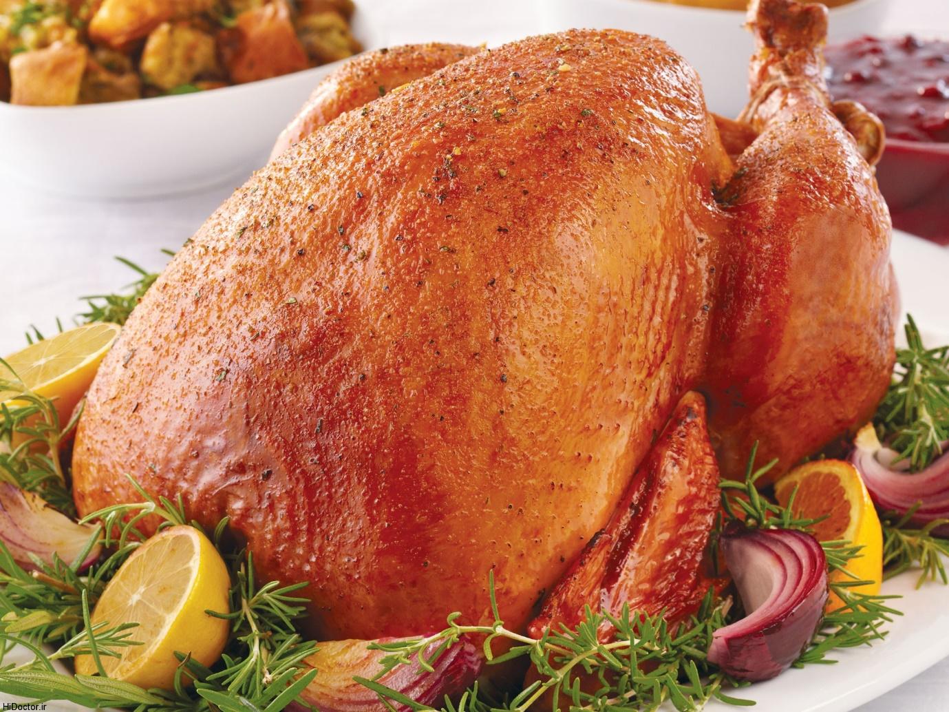 گوشت بوقلمون بهتر است یا مرغ