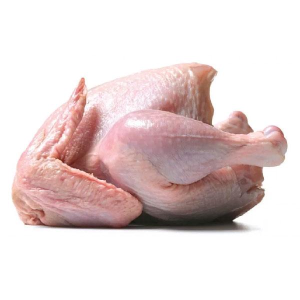 خرید مرغ کامل و بهداشتی