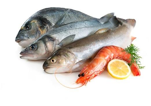 ماهی شمال